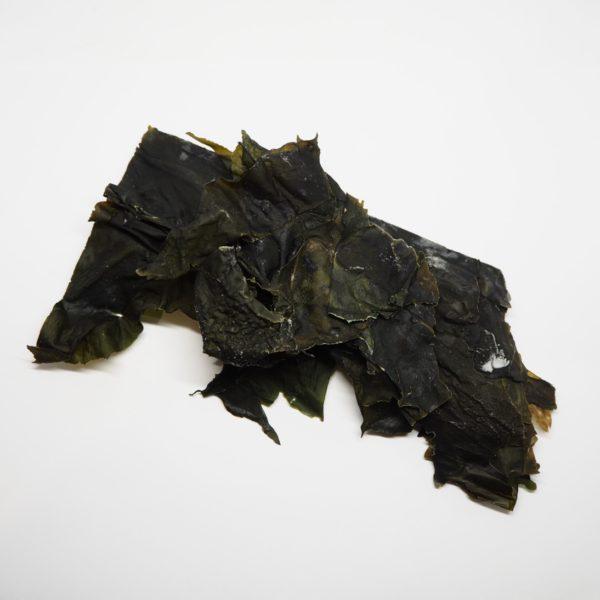 alga-wakame