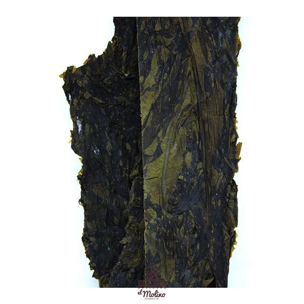 alga-lechuga-mar-deshidratada