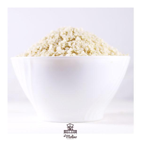 grano-arroz-redondo-blanco