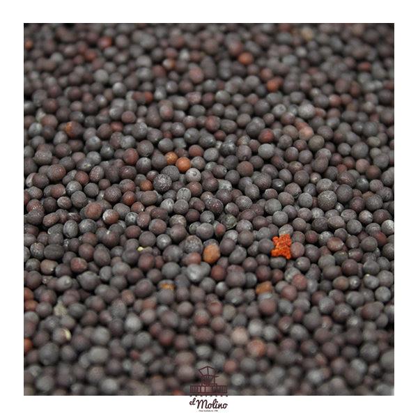 mostaza-marron-ecologica-granel