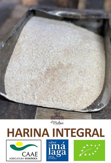 harina-integral-sabor-malaga